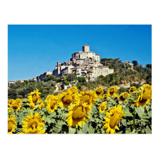 Hill town of Narni, Umbria, Italy  flowers Postcard