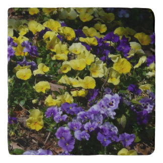 Hillside of Purple and Yellow Pansies Trivet