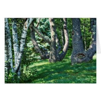 Hillside Trees Card