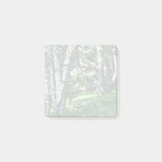 Hillside Trees Post-it Notes