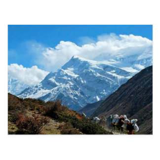 Himalaya Mount Everest India Nepal Travel Summer Postcard