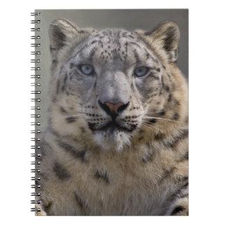 Himalayan Prince Notebook