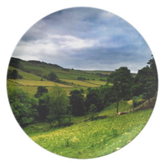 Hinchliffe Mill View Plate
