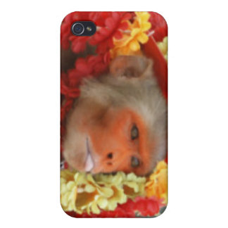 Hindu Ceremonial Monkey Case For iPhone 4