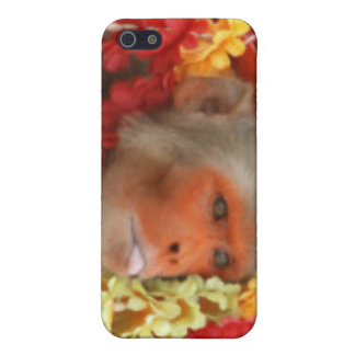 Hindu Ceremonial Monkey Case For The iPhone 5