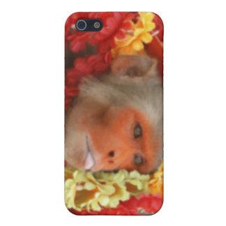 Hindu Ceremonial Monkey iPhone 5 Case