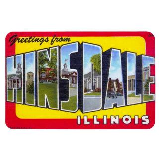 Hinsdale Illinois IL Large Letter Postcard Magnet