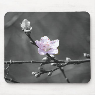 Hint of Pink Cherry Blossom Mouse Pad