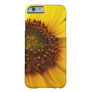 Hint of Sunshine Barely There iPhone 6 Case
