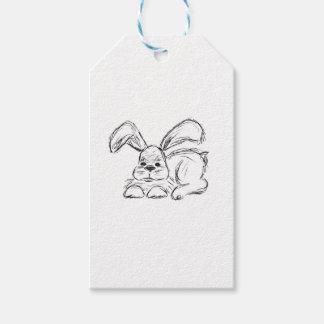 Hip Hop, A Bunny Rabbit
