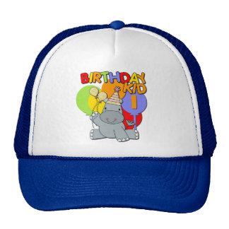 Hippo 1st Birthday Cap