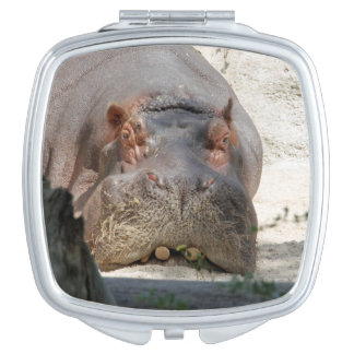 Hippo_20171101_by_JAMFoto Makeup Mirror