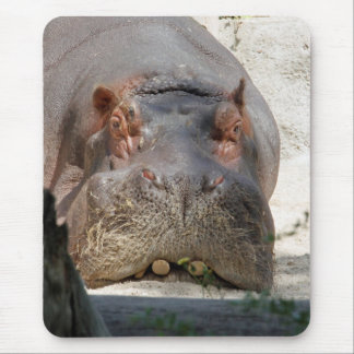 Hippo_20171101_by_JAMFoto Mouse Pad