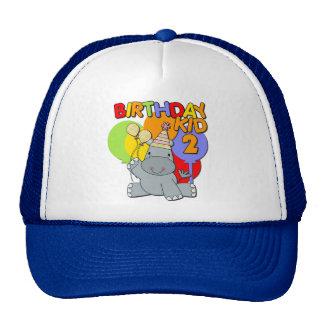 Hippo 2nd Birthday Cap
