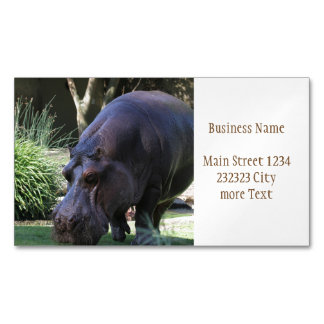 Hippo AJ17 Magnetic Business Card