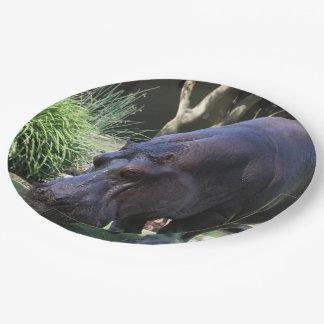 Hippo AJ17 Paper Plate