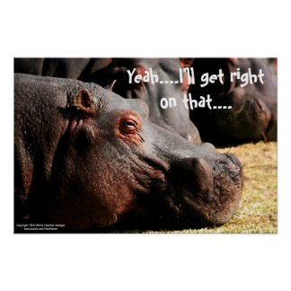 """Hippo attitude """"I'll get right on that"""" poster"""