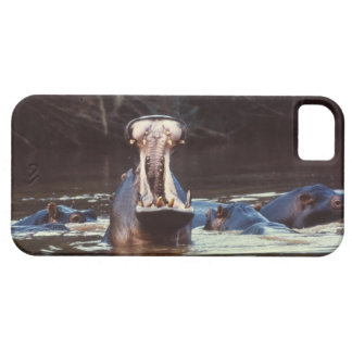 Hippo Case For The iPhone 5