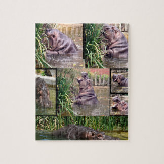 Hippo_Collage,_Jigsaw_Puzzle. Jigsaw Puzzle
