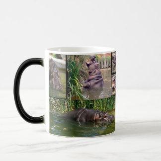 Hippo,_Photo_Collage_Magic_Morph_Coffee_Mug. Magic Mug