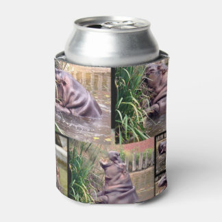 Hippo Photo Collage, Stubby Holder Can Cooler