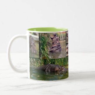 Hippo Photo Collage, Two-Tone Coffee Mug