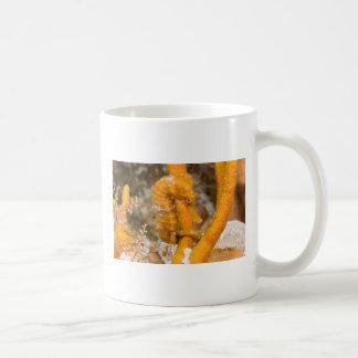Hippocampus reidi - Longsnout Seahorse Coffee Mug