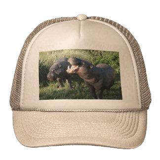 Hippopotamus Cap