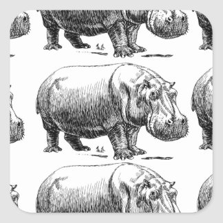 hippopotamus gold square sticker