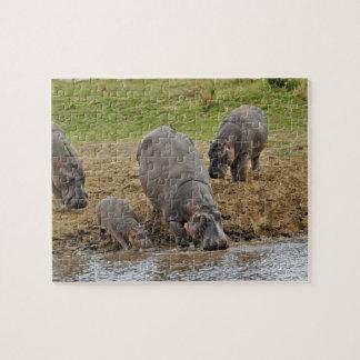 Hippopotamus, Hippopotamus amphibius, Serengeti Jigsaw Puzzle