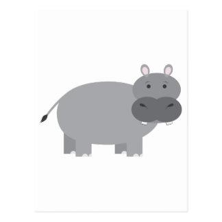 Hippopotamus Postcard