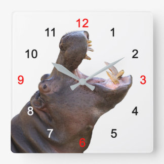 Hippopotamus Square Wall Clock