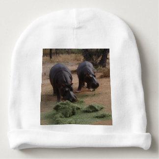 hippos baby beanie