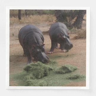 Hippos Disposable Napkin