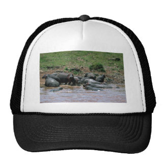 Hippos - In River Trucker Hats