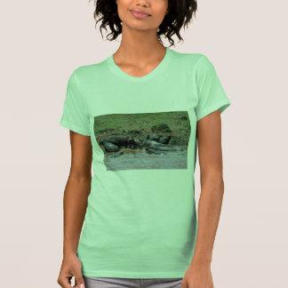 Hippos - In River Tshirt