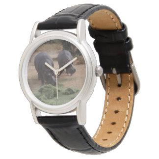 Hippos Watch