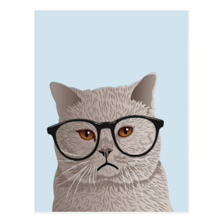 Hipster British Shorthair Cat Postcard