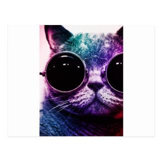 Hipster Cat Pop Art Postcard