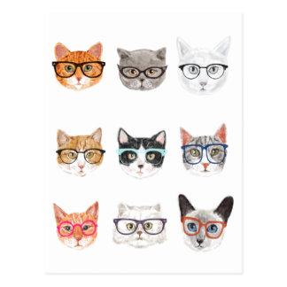 Hipster Cats Postcard