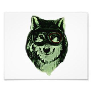 Hipster Dog Style Photo