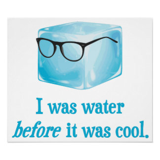 Hipster Ice Cube Was Water Before It Was Cool Poster