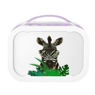Hipster Zebra Style Animal Lunch Box