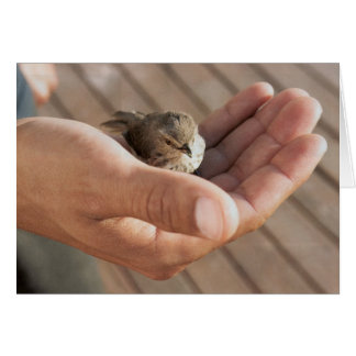 His eye is on the sparrow Christian Greeting Card