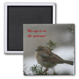 His eye is on the sparrow!  Magnet
