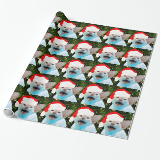 Hissing Cat in a Santa Hat Wrapping Paper