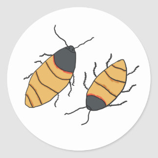 Hissing Cockroaches Classic Round Sticker