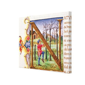 Historiated Initial 'N' Stretched Canvas Print