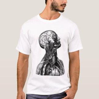 Historic Anatomical Torso Drawing T-Shirt
