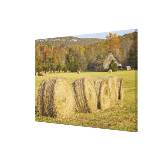 Historic farm in the Buffalo National River, Stretched Canvas Print